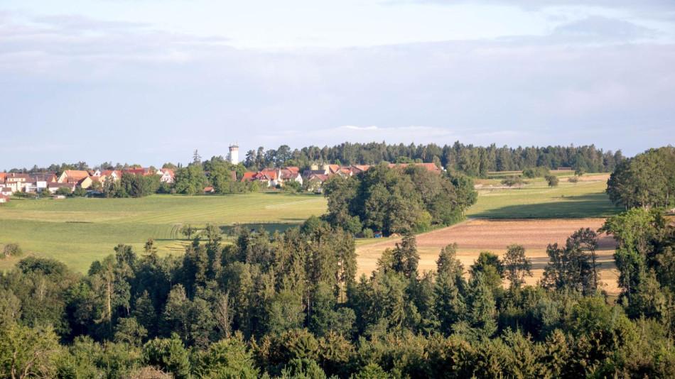 Panoramablick auf die Stadt Neubulach